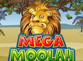 Die afrikanische Safari lässt sich in Mega Moolah online nicht lumpen.